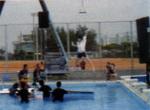 Mituya2